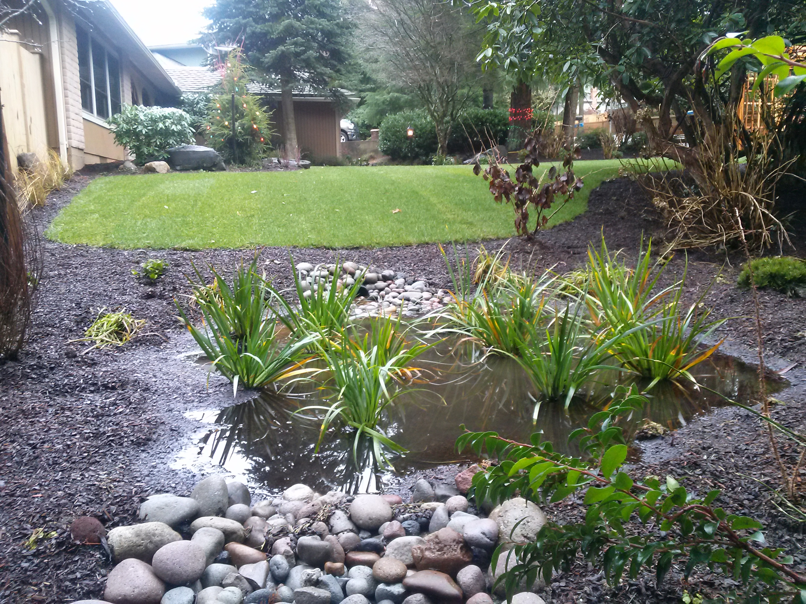 Rain Gardens are Proven to be a Big Boost in Water Quality