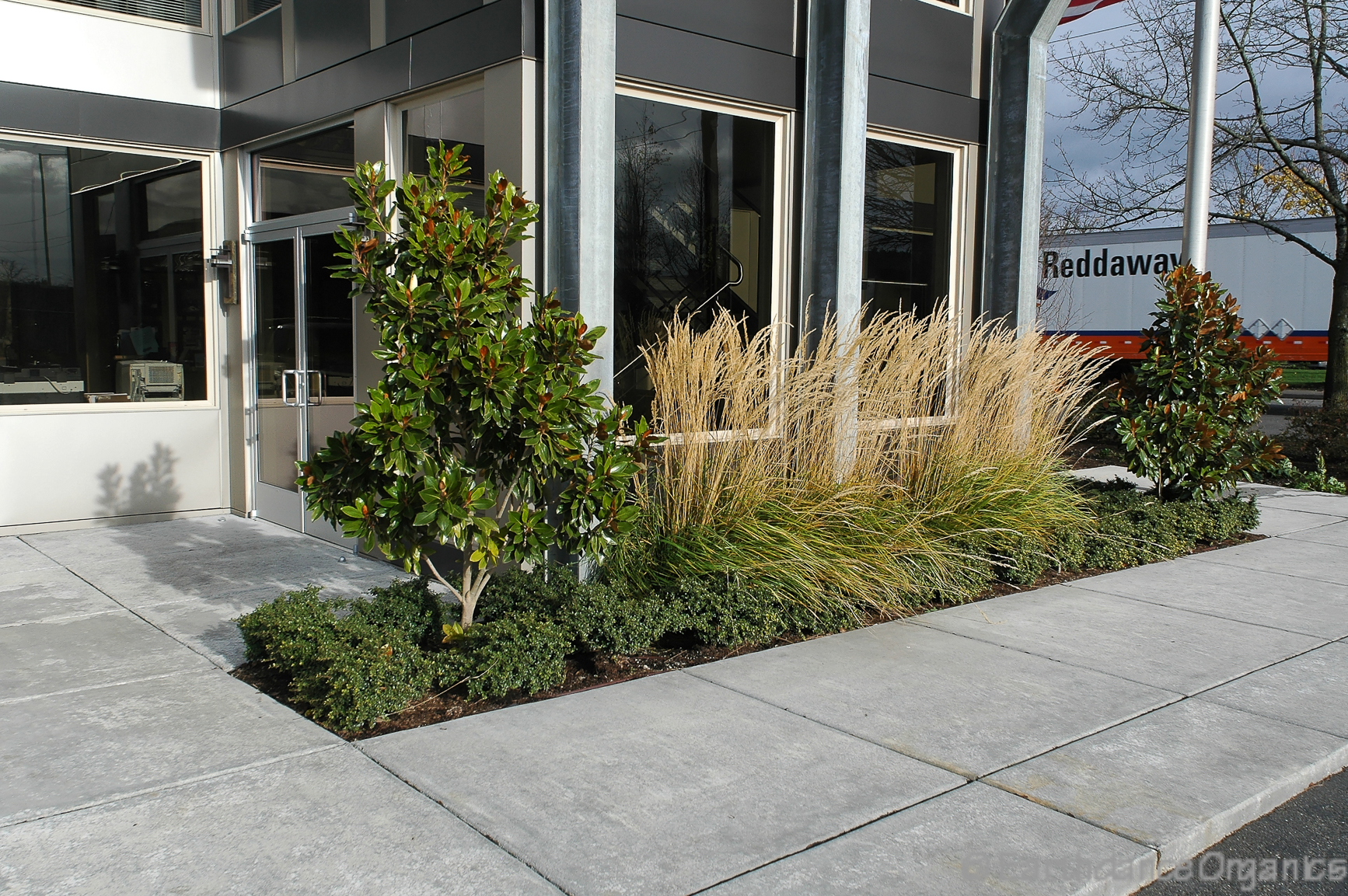 photo of client yard