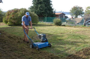 A dethatch can loosen loads of organic matter in the lawn that was beyond sight.